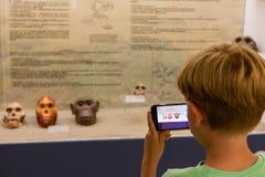 Niño que toma fotografía del primate del cráneo en el museo Imágenes de archivo libres de regalías
