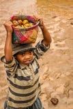 Niño que vende friuts Foto de archivo libre de regalías
