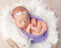 Niño recién nacido en cesta lana-cubierta con el juguete imagen de archivo libre de regalías