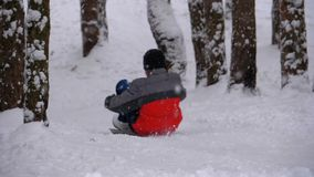 Niño Sledding abajo de una colina Nevado en el pino Forest Slow Motion almacen de video