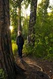 Niño solamente en bosque Foto de archivo