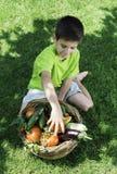 Niño y cesta con las verduras Imagen de archivo libre de regalías