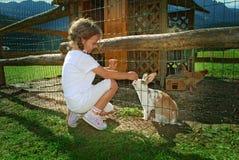 Niño y conejo Fotografía de archivo libre de regalías