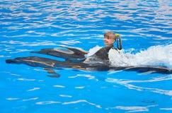 Niño y delfínes que nadan en agua azul. Foto de archivo