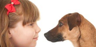 Niño y perro, cara a cara Fotos de archivo libres de regalías
