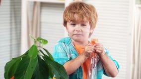 Niño y planta Aguacate Agrónomo, agricultura Sucio del bebé del suelo que riega la planta interior Biólogo Botany metrajes