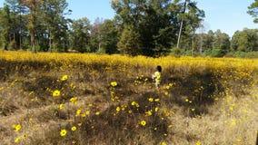 Niño y wilflowers amarillos Imágenes de archivo libres de regalías