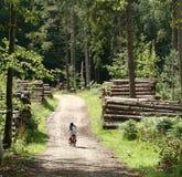 Niños adentro él bosque Fotos de archivo