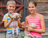 Niños con el cochinillo fotos de archivo libres de regalías