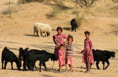 Niños con las cabras Fotografía de archivo libre de regalías