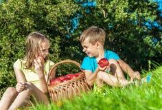 Niños con las manzanas de la cesta Foto de archivo