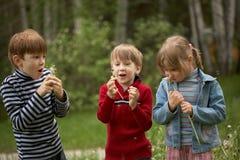 Niños con los dientes de león Foto de archivo libre de regalías