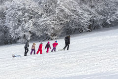 Niños con los trineos en la nieve Imagen de archivo
