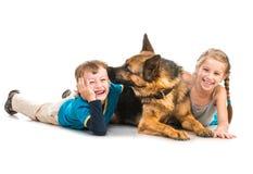 Niños con un perro de pastor Fotografía de archivo