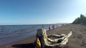 Niños de la gente sobre todo que se divierten que permanece en la playa durante verano caliente Seguimiento del tiro almacen de metraje de vídeo