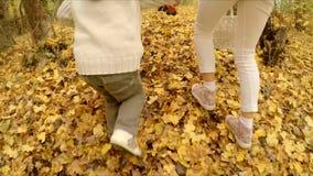 Niños en el bosque del otoño metrajes