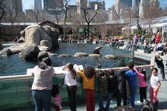 Niños en el parque zoológico foto de archivo