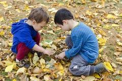 Niños en hojas de otoño Imagenes de archivo