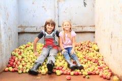 Niños en manzanas imagen de archivo
