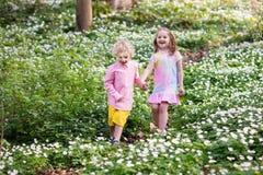 Niños en parque de la primavera con las flores Fotografía de archivo
