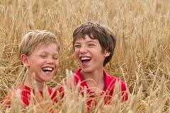 Niños en un campo de trigo Imágenes de archivo libres de regalías