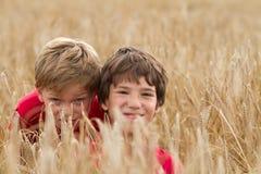 Niños en un campo de trigo Imagen de archivo
