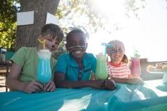 Niños felices con la pintura de la cara que tiene bebidas en el parque Fotos de archivo libres de regalías