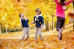 Niños felices, hermanos del muchacho, jugando en el parque con las hojas Fotos de archivo