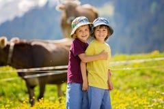 Niños felices que caminan en una trayectoria rural en las montañas suizas, primavera Fotografía de archivo libre de regalías