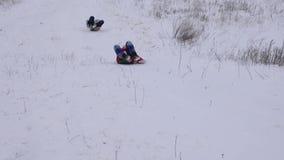 Niños felices que se deslizan en los trineos de la alta montaña nevosa en parque del invierno durante los días de fiesta de la Na almacen de metraje de vídeo