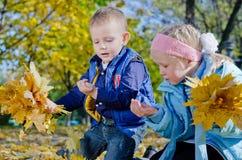 Niños jovenes que juegan con los insectos Imagen de archivo libre de regalías