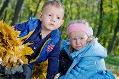 Niños jovenes que juegan en un arbolado del otoño Imagen de archivo libre de regalías