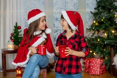 Niños lindos, muchacho y muchacha, divirtiéndose en la Navidad Imágenes de archivo libres de regalías