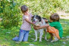 Niños - muchacho y muchacha - con el perro al aire libre Imagen de archivo libre de regalías