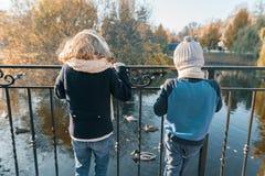 Niños muchacho y situación de la muchacha con sus partes posteriores cerca de la charca en el parque, mirando los patos, día sole fotos de archivo libres de regalías