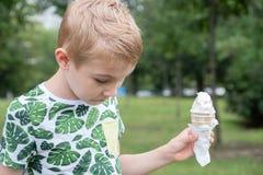 Niños pequeños divertidos de los niños de los niños que comen el helado Fotos de archivo libres de regalías