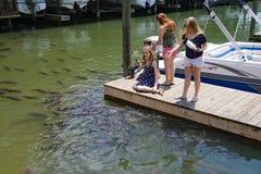 Niños que alimentan las carpas en Smith Mountain Lake imagenes de archivo