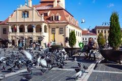 Niños que alimentan palomas en una plaza principal de la ciudad rumana Braso Foto de archivo