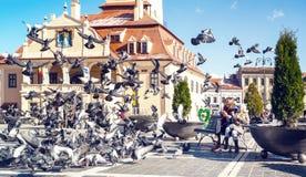 Niños que alimentan palomas en una plaza principal de la ciudad rumana Braso Fotografía de archivo