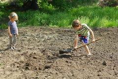 Niños que ayudan a plantar las patatas en el jardín imágenes de archivo libres de regalías