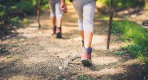 Niños que caminan en montañas o bosque con el deporte que camina los zapatos Fotos de archivo