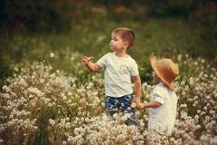 Niños que caminan en un campo Hermanos en un paseo del verano Fotografía de archivo