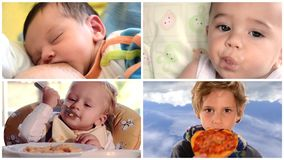 Niños que comen el montaje almacen de video