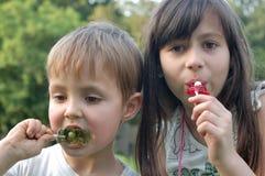 Niños que comen los lollipops Imagen de archivo