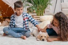 Niños que juegan con el perrito lindo de Labrador en casa Imagen de archivo