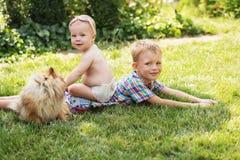 Niños que juegan con el perro de Pomerania de Pomeranian del perro Foto de archivo libre de regalías