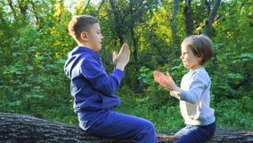 Niños que juegan en bosque almacen de video