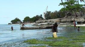 Niños que juegan en el agua poco profunda - Zanzíbar metrajes