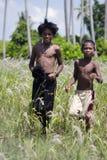 Niños que juegan en el campo en la zona rural Fotografía de archivo