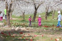 Niños que juegan en el jardín Fotografía de archivo libre de regalías